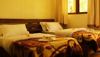 Standard - Twin beds
